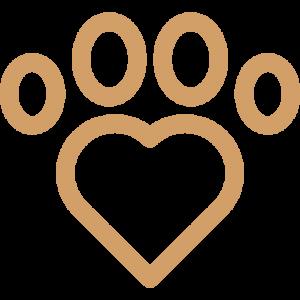 Lifespan Puppy Adoption Singapore SingaporePuppyAdoption