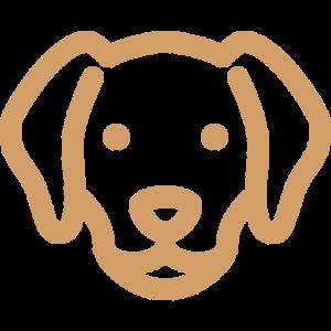 Dog Breed Puppy Adoption Singapore SingaporePuppyAdoption