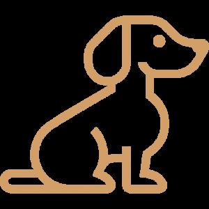 Dog Puppy Adoption Singapore SingaporePuppyAdoption